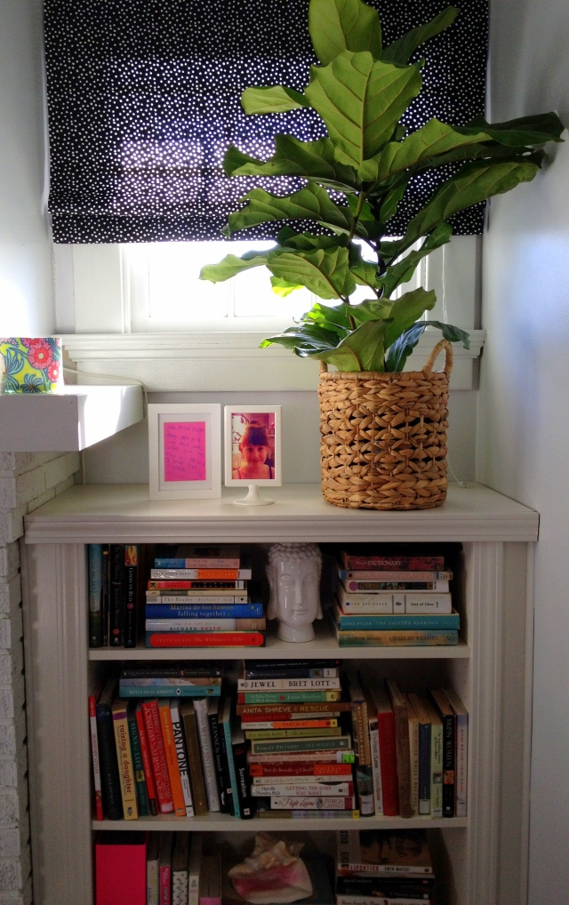 fiddle fig